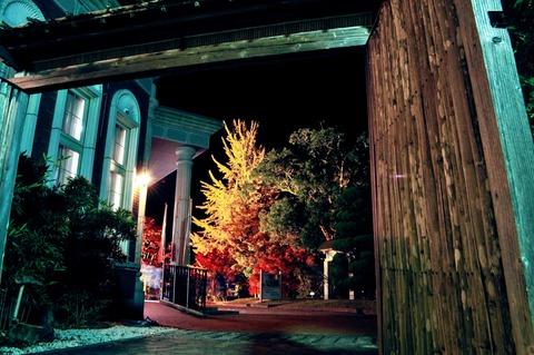 伊藤公記念公園ライトアップ-83