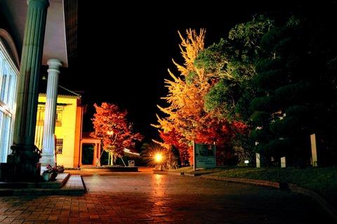 伊藤公記念公園ライトアップ-89
