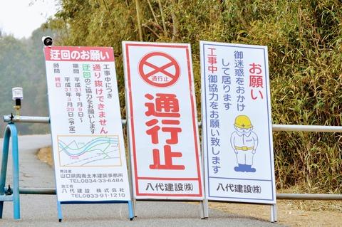 島田川沿い-3