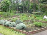 四季の香り公園 ハーブ園