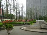 四季の香り公園 バラ園