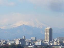 光が丘団地から見た富士山