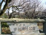 練馬区立田柄梅林公園