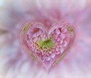 11glass heart