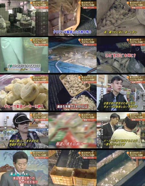 大腸菌 韓国食品