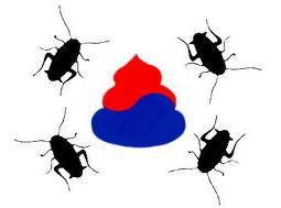 韓国 うんこ 国旗