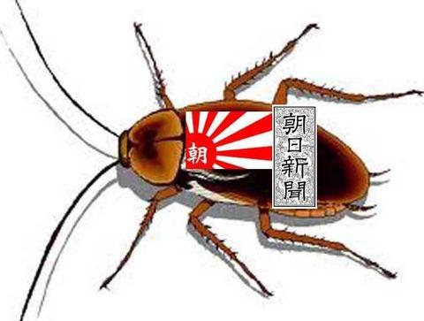 gokiburiasahishinbun-thumb-675x510-31