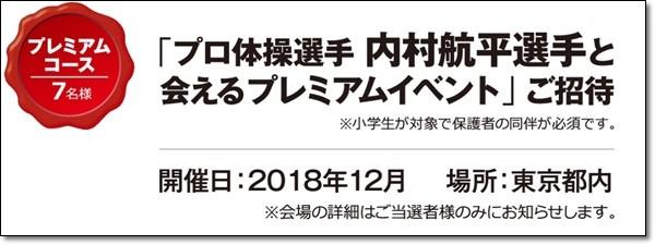 ★ジョイカルジャパン