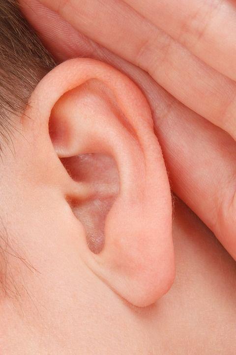 耳単音楽器