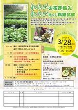 花芽摘みチラシ2015_02020001