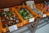 01野菜_R