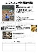 H25度レンコン収穫(チラシ)