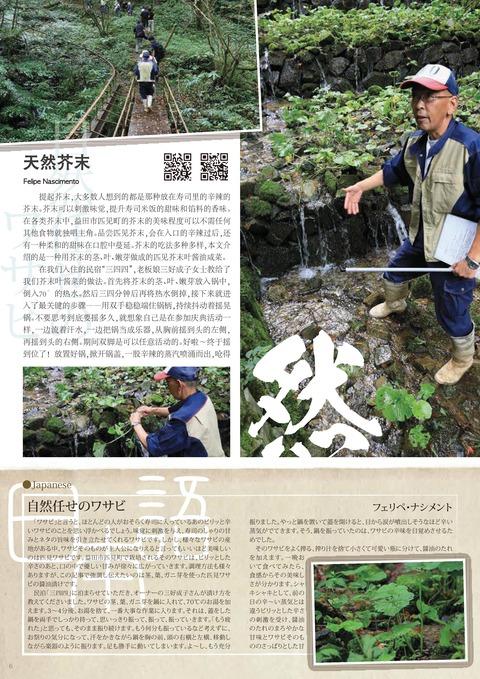 chinese_vol.39-006