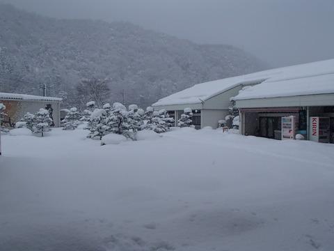 01雪 (2)
