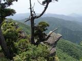 立岩からの撮影_R