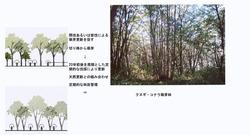 ○景観を考慮した森林管理手法(香川隆英)_04