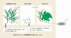 ●◎稲垣栄洋「草刈りは、やりすぎに注意」topic04-01
