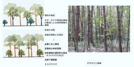 ○景観を考慮した森林管理手法(香川隆英)_08
