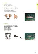 ●野生鳥獣被害防止マニュアル(中型獣類編)農林水産省201803_3