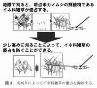 稲垣「雑草学の視点から害虫防除を考える」7_12