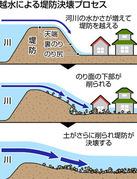 東京新聞茨城版石崎インタヴューPK2019110602100077_size0