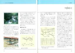 まちと水辺に豊かな自然を18頁