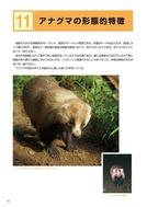 ●野生鳥獣被害防止マニュアル(中型獣類編)農林水産省201803_6