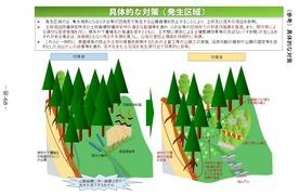 「流木災害等に対する治山対策検討チーム」中間取りまとめ資料分割6