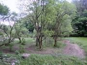 P4250033