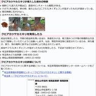 クビアカツヤカミキリについて(東松山市)2