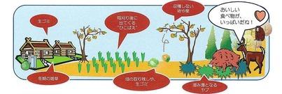 丹南地域鳥獣害対策マニュアル(イノシシ編)2011年2月_ページ_4