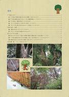 地域の森をみんなで守ろう(神奈川県)_02