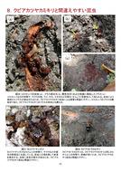 クビアカツヤカミキリ被害防止の手引(埼玉県)_14