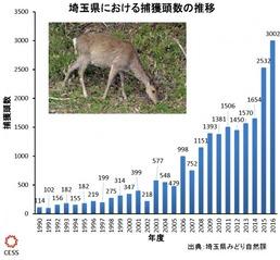 埼玉県におけるシカ捕獲頭数の推移