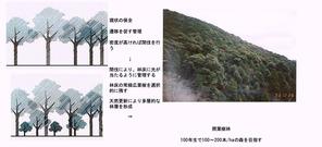 ○景観を考慮した森林管理手法(香川隆英)_06