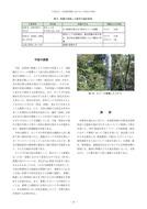 自然教育園におけるナラ枯れの発生_7