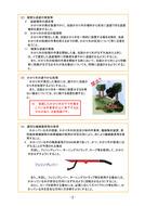 かかり木処理ガイドライン_2