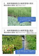 澁谷知子「畦畔等圃場周辺の省力的雑草管理に向けた課題と展望」_04