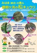 煙樹ヶ浜の松キュウリ