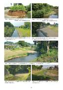 境川(多自然川づくり参考事例集11)