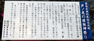 P7110033