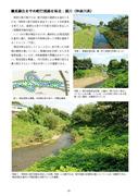 境川(多自然川づくり参考事例集10)