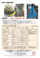 クビアカツヤカミキリ注意喚起リーフレット(埼玉県)_2