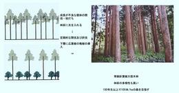 ○景観を考慮した森林管理手法(香川隆英)_12