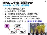 Hayashi20201029_04