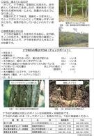 ナラ枯れの被害からまもるために(埼玉県)_4