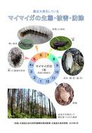 マイマイガの生態・被害・防除(北海道)_1