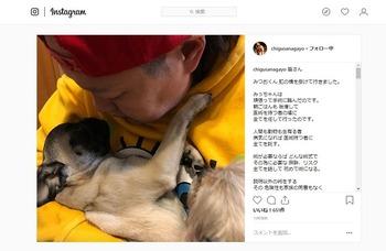 【女子プロレスラー長与千種】愛犬「みつお君」が手術中に死亡 獣医に激怒「謝りも説明もない。二度と医術に携わるな」