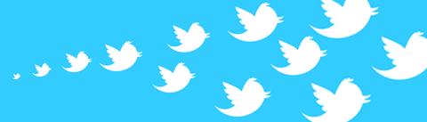 twitter_survey_lead