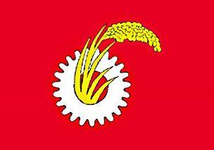 jcp-flag